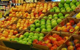 Экспортеры фруктов и овощей в Молдове могут растаможивать продукцию на любом российском таможенном пункте
