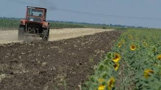 Сельхозпроизводители и ученые выступают против инициативы правительства РМ об утверждении Каталога ЕС сортов сельскохозяйственных растений