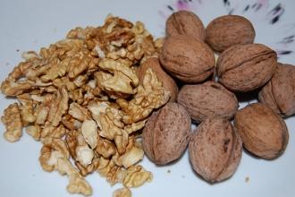 С начала года было экспортировано более 4 тыс. тонн очищенных грецких орехов