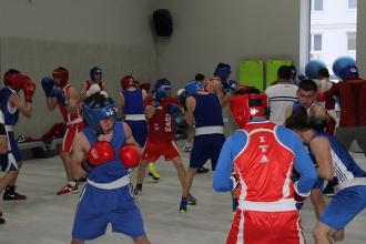 Сборная по боксу в пятницу отправляется на чемпионат Европы U-22