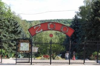 Кишиневский зоопарк будет закрыт в течение недели