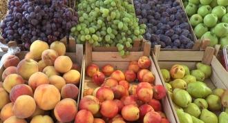 Экспортный путь молдавских фруктов