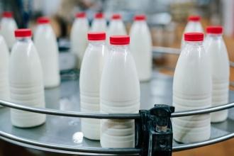 Лидеры по импорту молока из Украины