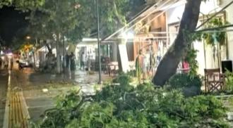Шесть иностранных граждан погибли в результате сильного шторма на полуострове Халкидики