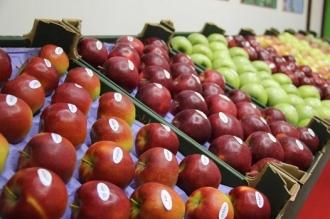 География экспорта фруктов из Молдовы