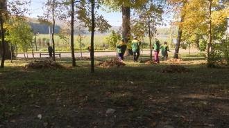 В Кишиневе проходит осенняя кампания по уборке