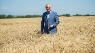 ОПРОС: Игорь Додон может выиграть президентские выборы в первом туре