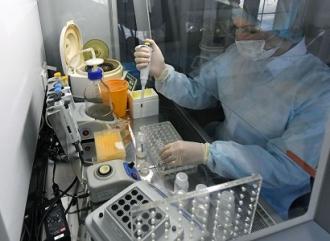 Количество заражений коронавирусом на прошлой неделе снизилось на 24%