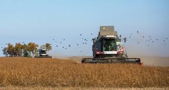 С сегодняшнего дня аграрии могут обращаться за возмещением НДС