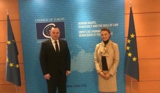 Вице-спикер Парламента Влад Батрынча встретился с Генеральным секретарем Совета Европы Марией Пейчинович-Бурич