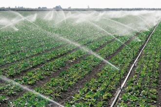 Ирригация - основа сельского хозяйства
