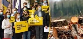 Скандал в Кантемире! Кандидат ПДС обвинен в незаконной вырубке деревьев