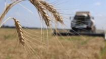 Правительство предлагает продолжить программу возмещения НДС для аграриев