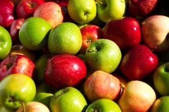 РФ с 9 марта ужесточает правила ввоза яблок и груш по сертификатам Молдавии