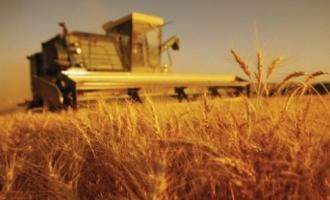 Ministerul Agriculturii promite să achite compensaţiile fermierilor pînă la sfîrşitul lunii martie