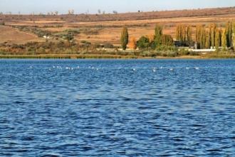 Problema irigației pe agenda autorităților