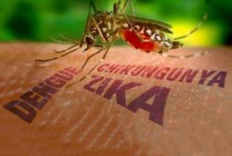 Circa 2,2 miliarde de persoane, expuse riscului de infectare cu virusul Zika