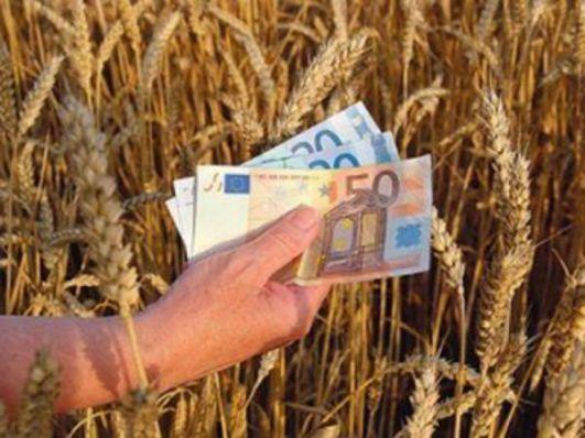 кредит на поддержку сельского хозяйства