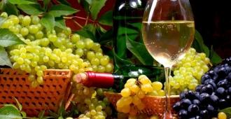 Vinurile și fructele moldovenești vor fi expuse în cadrul unei expoziții-iarmaroc de la Moscova
