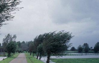 Cod Galben de vânt puternic și ploi cu descărcări electrice pe întreg teritoriul țării