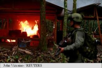 Columbia: Peste șapte tone de cocaină, confiscate de autorități