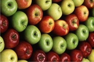Moldova, printre trei cei mai mari cumpărători de mere din Ucraina