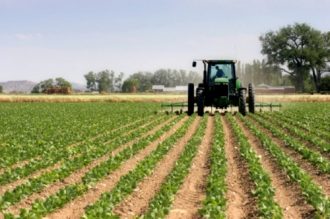 Moldova și Ungaria își vor intensifica cooperarea în domeniul agriculturii