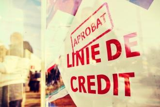 Crește ponderea creditelor neperformante în sectorul bancar