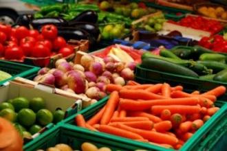 Lista întreprinderilor agricole moldovenești cu drept de export în Rusia, va fi extinsă