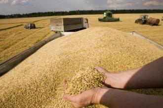 Antreprenorii din stânga Nistrului vor avea nevoie de licență pentru exportul cerealelor