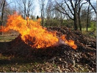 Persoanele care vor da foc frunzelor uscate, vor fi amendate