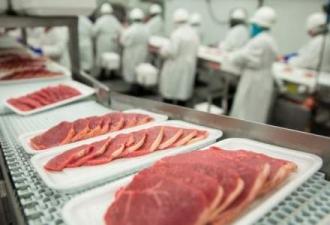 Producătorii autohtoni de carne vor fi vizitați de experți din Arabia Saudită