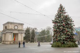 Pomul de Crăciun va fi inaugurat în această seară