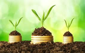 """Moldova va investi 122,5 mln lei în economia """"verde"""" în următorii trei ani"""