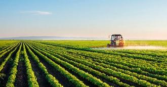 Subvenții în avans pentru tinerii agricultori