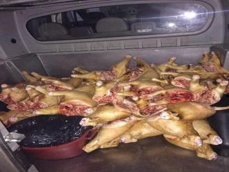 Carne de morc și mezeluri, transportate și păstrate în condiții insalubre; Produsele erau vîndute la Piața Centrală