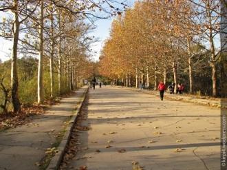 Autoritățile promit reamenjarea parcului Valea Trandafirilor până în vară