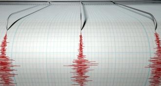 Cutremur cu magnitudinea de 6,9 grade pe scara Richter în Papua Noua Guinee