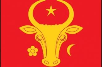 Fiecare primărie din țară va primi câte un Drapel de Stat, dar și drapelul istoric al lui Ștefan cel Mare și Sfînt