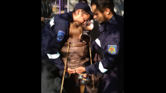 Se juca și a intrat cu capul într-o poartă; Un copil de 3 ani a avut nevoie de ajutorul salvatorilor