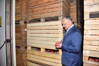 Dodon: Înțelegerea la care am convenit cu Putin, va conduce la majorarea exporturilor de produse agricole din țara noastră