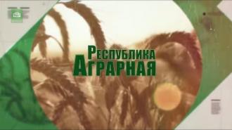 Moldova Agrară cu Liliana Mircea-Buga din 12.11.19