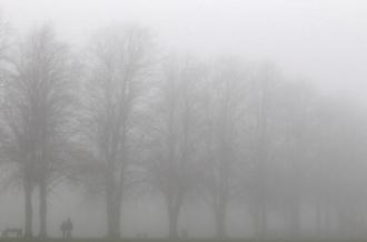 Cod galben de ceață în toată țara