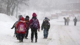 Sute de elevi nu au ajuns la școală