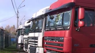 Posibilităţi pentru export în Rusia