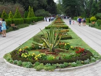 O nouă intrare în Parcul Dendrariu, din partea străzii Vasile Lupu