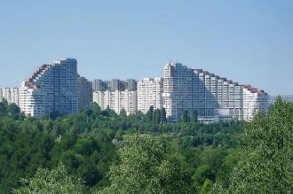 Chișinăul pierde anual mii de copaci