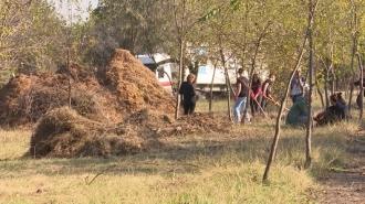 Elevii și studenții s-au mobilizat într-o campanie de salubrizare a râului Bâc