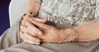 Statul le va acorda pensionarilor un suport financiar unic de 700 de lei