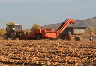 Comisia parlamentară a avizat pachetul de susținere a agricultorilor, propus de Guvern